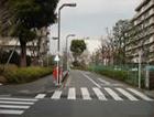 横断歩道を渡り、1つ目の道を左折